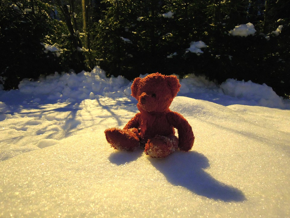 teddy-bear-1201706_960_720